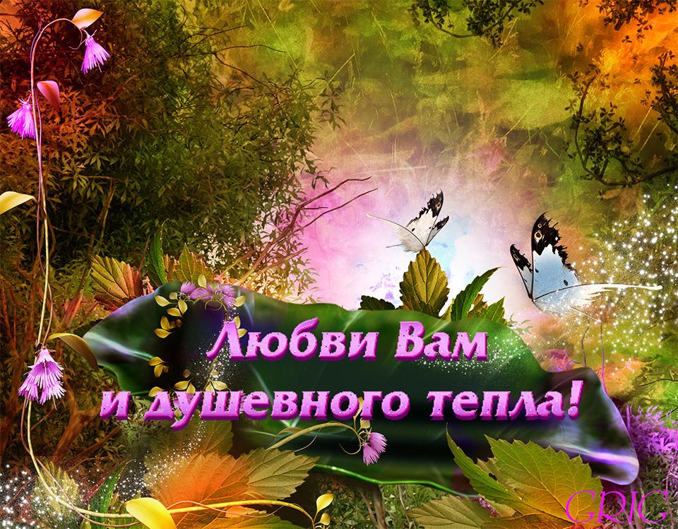 http://content-29.foto.mail.ru/mail/grinya_1961/3d-galleru.ru/s-50788.jpg