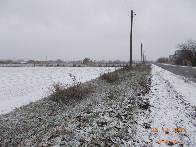 В Копанях выпал первый снег